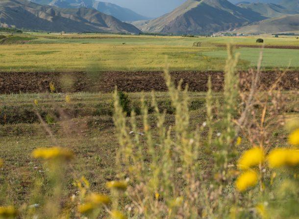 Erzurum Landscape
